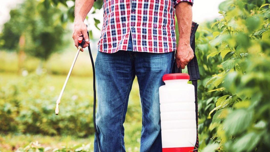 Best Garden Pump Sprayers