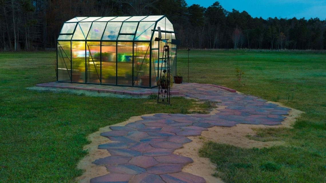 Best Greenhouses For Backyard