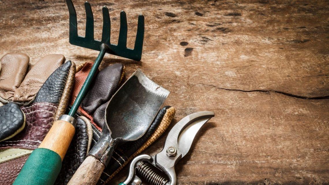 Best Gardening Tools