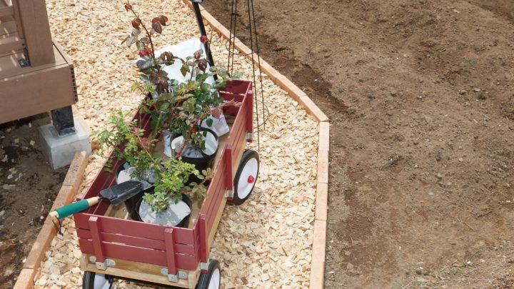 Best Garden Carts